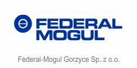 securepro ref federa mogul gorzyce 200px